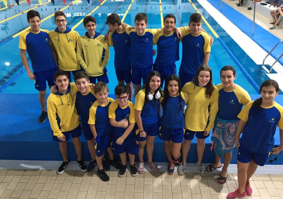Torneio Nadador Completo